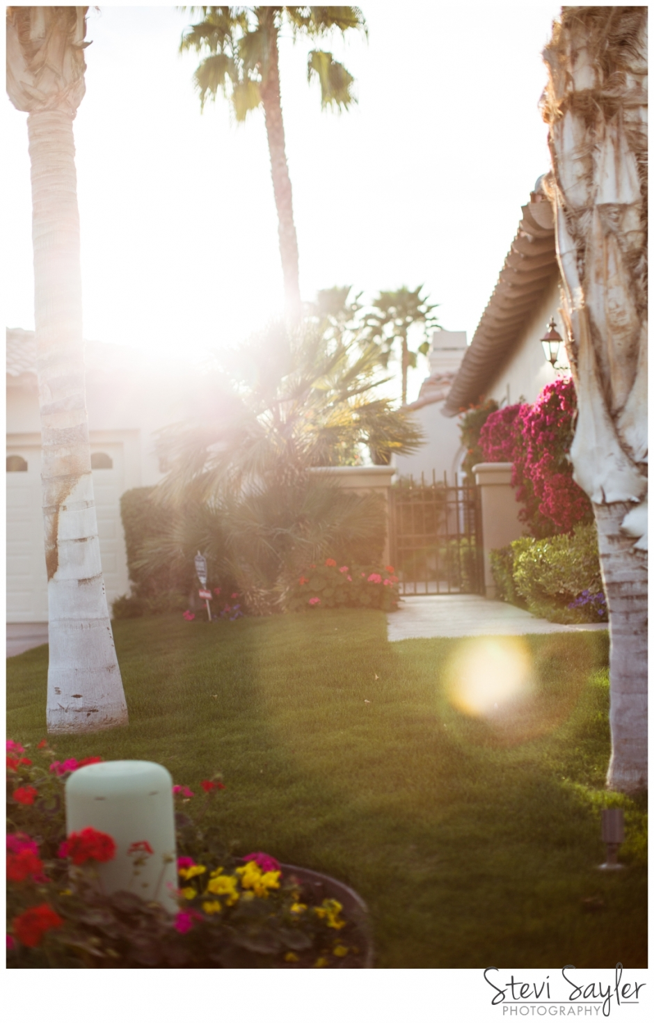 Stevi Sayler Photography La Quinta California Destination Photographer Still Life Landscape