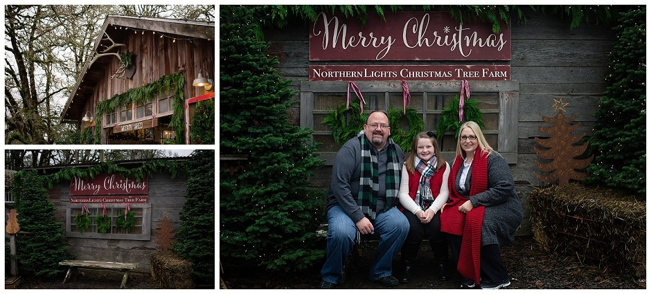 eugene oregon family photography northern lights christmas tree farm sutter family photos